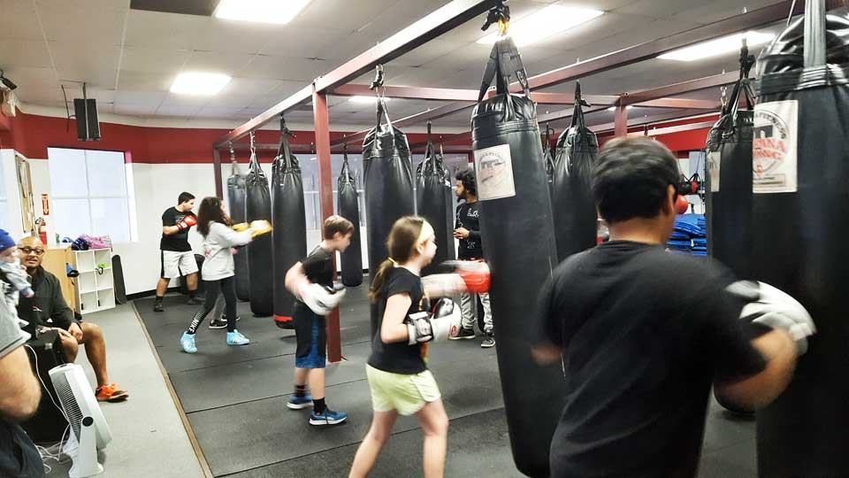 Kids punching the heavy bags at Tarzana Boxing