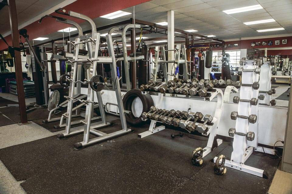 Gym equipment, including free weights, weight machines, eliptical machines and treadmills.